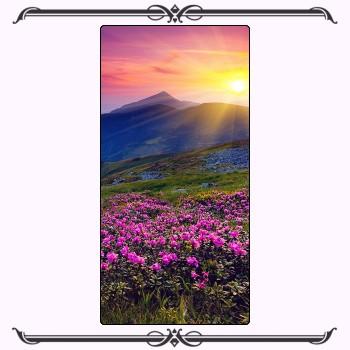 Природа 16-001