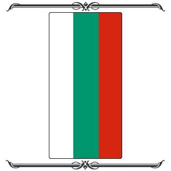 Флаги 29-003
