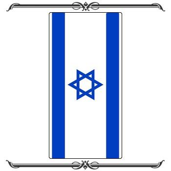 Флаги 29-004
