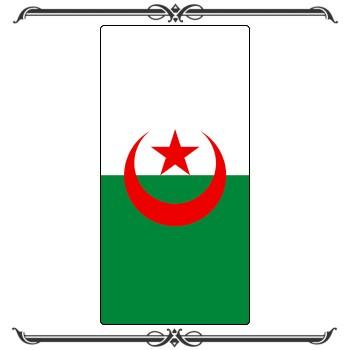 Флаги 29-008