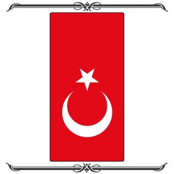 Флаги 29-009